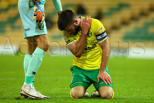 3rd November 2020; Carrow Road, Norwich, Norfolk, England, English Football League Championship Football, Norwich versus Millwall; Grant Hanley of Norwich City suffers an arm injury