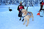 Crested Butte mountain ski patrolman Shawn Williams during a training for two avalanche rescue labs -  Ziggy, a chocolate lab, and Jenny, a blonde lab.
