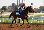 October 23, 2015:  Ordak Dan (ARG), trained by Juan Etchechoury, and owned by Stud Misterio, is entered in the Breeder's Cup Longines Turf.  Candice Chavez/ESW/CSM
