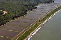 aerial photograph of shrimp farming at the Pacific coast, Panama | fotografía aérea de la cría de camarones en la costa del Pacífico, Panamá