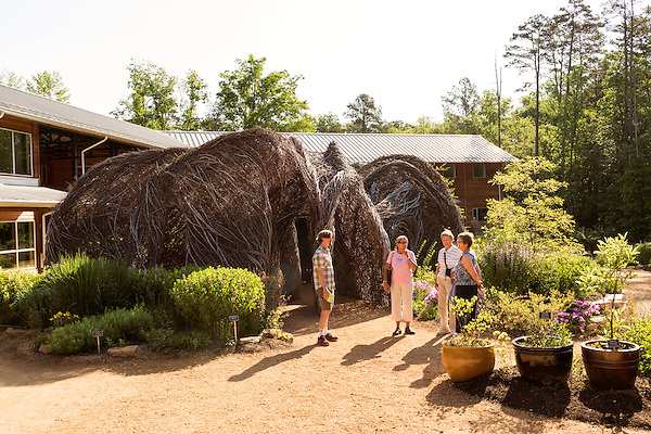 "May 8, 2015. Chapel Hill, North Carolina.<br />  Matt Daley (left), an employee of the NC Botanical Gardens, stands in front of Patrick Dougherty's sculpture ""Homegrown"" while talking to (left to right) Sarah Dunn, Marlene Fessick and Charlotte Malone, visitors to the Gardens from Tennessee on a 10 day southeastern garden tour. <br />  Outsiders tend to lump Chapel Hill with nearby Durham, but the more sensible pairing is with Carrboro, the adjacent town that was once a mere offshoot known as West End. Even today the transition from Chapel Hill, anchored by North Carolina''s flagship public university, into downtown Carrboro is virtually seamless."