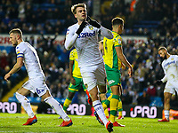 Leeds United's Patrick Bamford celebrates scoring his side's only goal<br /> <br /> Photographer Alex Dodd/CameraSport<br /> <br /> The EFL Sky Bet Championship - Leeds United v Norwich City - Saturday 2nd February 2019 - Elland Road - Leeds<br /> <br /> World Copyright © 2019 CameraSport. All rights reserved. 43 Linden Ave. Countesthorpe. Leicester. England. LE8 5PG - Tel: +44 (0) 116 277 4147 - admin@camerasport.com - www.camerasport.com
