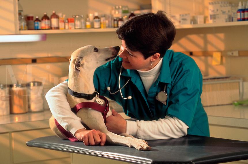 Veterinary tech gets an affectionate gaze from a whippet.