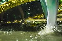 RIO DE JANEIRO (RJ) 29.02.2020 - Carnaval - Rio Escola de samba Mocidade Independente de Padre Miguel no desfile das campeas das escolas de samba do Grupo Especial do Rio de Janeiro neste sabado (29) na Marquues de Sapucai. (Foto: Ellan Lustosa/Codigo 19/Codigo 19)