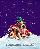 GIORDANO, CHRISTMAS ANIMALS, WEIHNACHTEN TIERE, NAVIDAD ANIMALES, paintings+++++,USGI2664,#XA# dogs,puppies