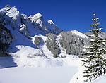 Austria, Upper Austria, Salzkammergut, winter scenery at Gosau lake