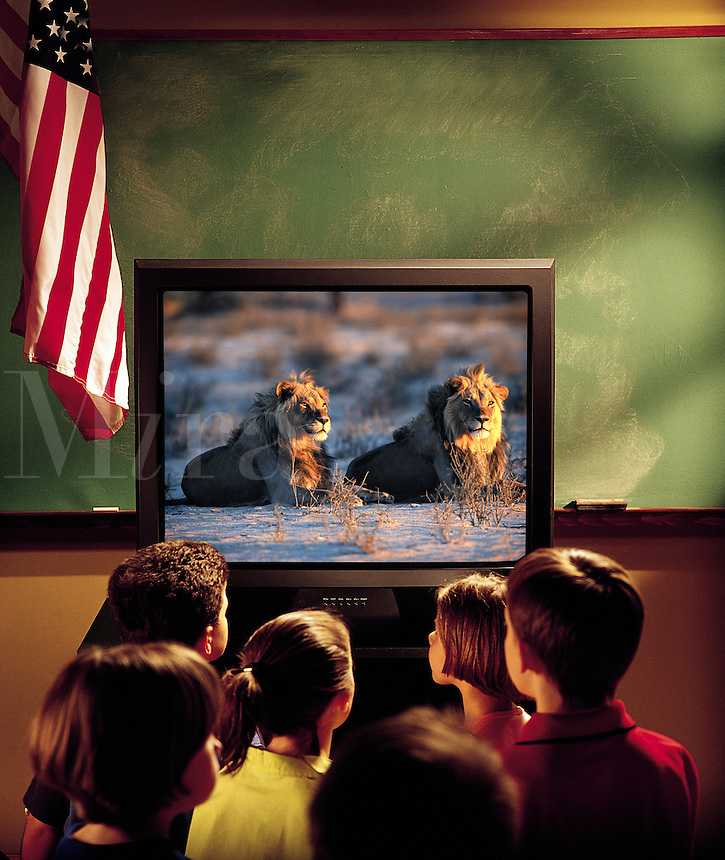Elementary school students watching nature documentary on televison in the classroom.