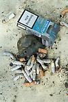 Smoking Kills Smoking kills, close up if a  full ash tray. 2000s