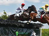 3rd Marcellus Frost Novice Stakes - Iranistan