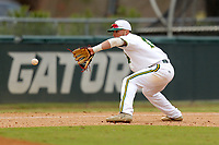 San Jacinto Gators infielder Andres Sosa (14) in action against the Bossier Parish Community College Cavaliers at Harrison Field on February 2, 2018 in Houston, TX. (Erik Williams/Four Seam Images)