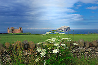 SC  - Prov. EAST LOTHIAN<br /> Tantallon Castle with Bass Rock in the background<br /> <br /> Full size: 69,2 MB
