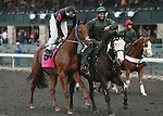 Bon Accord and Eddie Castro in the 23rd running of the Bourbon Grade 3 $150,000 at Keeneland Race Course.   October 06, 2013.