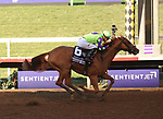DEL MAR, CA - NOVEMBER 04: Good Magic  #6, ridden by Jose Ortiz, wins the Sentient Jet Breeders' Cup Juvenile  race on Day 2 of the 2017 Breeders' Cup World Championships at Del Mar Racing Club on November 4, 2017 in Del Mar, California. (Photo by Carson Denis/Eclipse Sportswire/Breeders Cup)