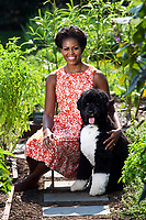 WASHINGTON - FEBRUARY 2011: First Lady Michelle Obama poses for the official portrait in the White House in Washington, DC.<br /> <br /> People:  First Lady Michelle Obama<br /> <br /> Transmission Ref:  FLXX<br /> <br /> Must call if interested<br /> Michael Storms<br /> Storms Media Group Inc.<br /> 305-632-3400 - Cell<br /> 305-513-5783 - Fax<br /> MikeStorm@aol.com<br /> www.StormsMediaGroup.com