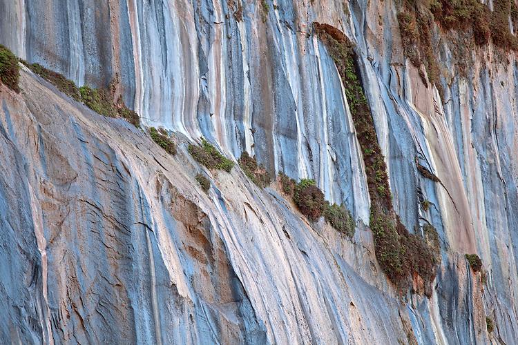 Hanging garden in in Glen Canyon, Glen Canyon National Recreation Area, Arizona