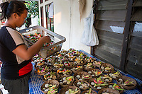 Bali, Indonesia.  Balinese Hindu Woman Gathering Offerings (Canangs) to Take to the Temple.  Some will be sold to women who were too busy to make their own.