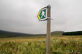Footpath sign and low cloud below Moelwyn Mawr in the Snowdonia National Park.