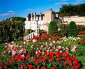 Tom Mackie, FLOWERS, photos, Chateau Villandry & Garden, Loire Valley, France, GBTM200288-2,#F# Garten, jardín