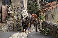 Europe/France/Auvergne/Haute-Loire/Saint-Arcons: Attelage dans les ruelles  du village