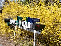 Mailboxes, York
