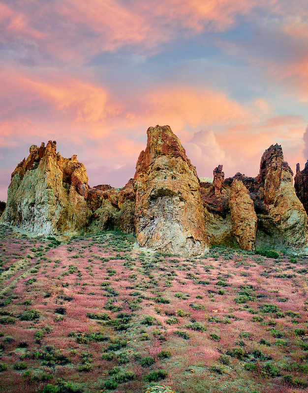 Rock formations with red Brome Grass and clouds in Leslie Gulch. Malhuer County, Oregon