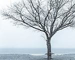 Winter view from Carson Beach, Boston, Massachusetts, USA
