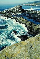 swirling ocean surf along rocky California coastline at Horseshoe Cove. California, Pacific coast.