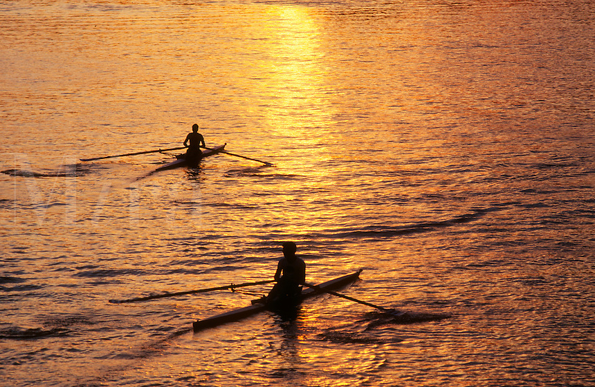 Rowing shells Cambridge MA