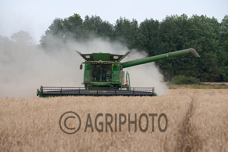 Harvesting Winter Barley in Lincolnshire.Picture by Tim Scrivener date taken 11th August 2012.mobile 07850 303986 e-mail tim@agriphoto.com.....covering agriculture in The United Kingdom....