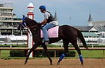 LOUISVILLE, KY - MAY 04: Venus Valentine (Congrats x Valentine Fever, by Stormin Fever) jogs on the track with exercise rider Maurice Sanchez in preparation for the Kentucky Oaks. Owner Rosemont Farm LLC, trainer Thomas A. Amoss. (Photo by Mary M. Meek/Eclipse Sportswire/Getty Images)