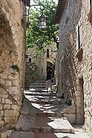 Europe/France/Provence-Alpes-Côte d'Azur/06/Alpes-Maritimes/ Eze-Village:  Ruelle du vieux village