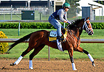 29 April 10:Discreetly Mine works out at Churchill Downs in Louisville, Kentucky