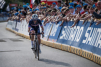 Julian Alaphilippe (FRA/Deceuninck - Quick Step) with 1 more lap to go<br /> <br /> Elite Men World Championships - Road Race<br /> from Antwerp to Leuven (268.3km)<br /> <br /> UCI Road World Championships - Flanders Belgium 2021<br /> <br /> ©kramon