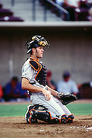 Jayson Werth of the Frederick Keys during the California League / Carolina League All Star Game at The Diamond circa 1999 in Lake Elsinore, California. (Larry Goren/Four Seam Images)
