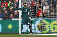 Danny Ward of Liverpool during the Barclays Premier League match between Swansea City and Liverpool played at the Liberty Stadium, Swansea on 1st May 2016