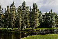 Rousseau-Insel und Neumarks Garten im Wörlitzer See, Parkanlage Wörlitzer Garten, Sachsen-Anhalt, Deutschland, Europa, UNESCO-Weltkulturerbe<br /> Rousseau-Island  and Neumark's Garden in Wörlitzlake, Wörlitz Gardens, Saxony-Anhalt, Germany, Europe, UNESCO-World Heritage