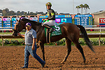 """DEL MAR, CA  JULY 28: #5 Ransom the Moon, ridden by Flavien Prat, returns to the connections after winning the Bing Crosby Stakes (Grade l) Breeders' Cup """"Win and You're In Sprint Division"""" on July 28, 2018 at  Del Mar Thoroughbred Club in Del Mar, CA. (Photo by Casey Phillips/Eclipse Sportswire/Getty Images)"""