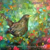 Simon, REALISTIC ANIMALS, REALISTISCHE TIERE, ANIMALES REALISTICOS, innovativ, paintings+++++SueGardner_Blackbird,GBWR355,#a#, EVERYDAY