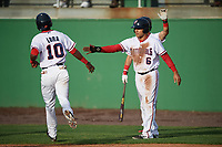 Potomac Nationals designated hitter Austin Davidson (6) high fives Edwin Lora (10) during the first game of a doubleheader against the Salem Red Sox on May 13, 2017 at G. Richard Pfitzner Stadium in Woodbridge, Virginia.  Potomac defeated Salem 6-0.  (Mike Janes/Four Seam Images)