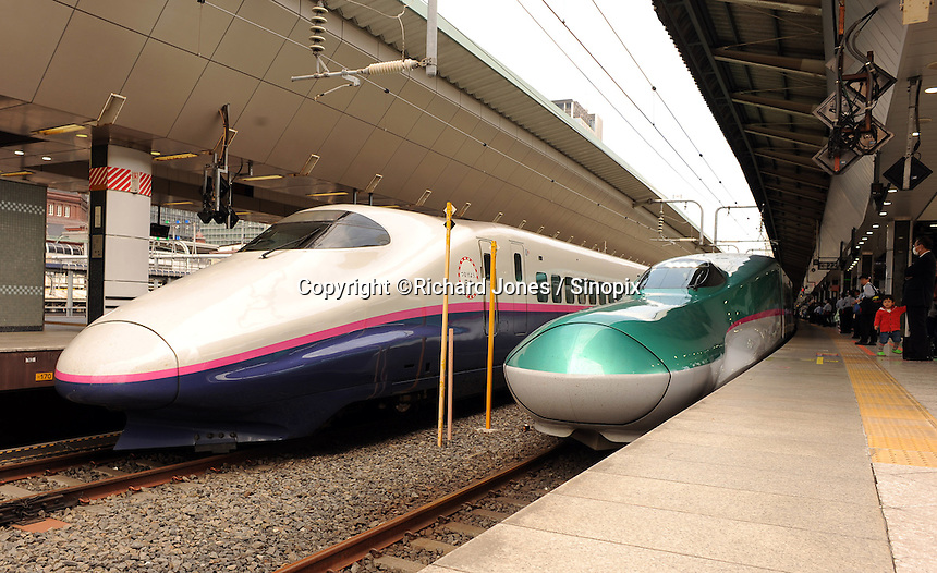 "E5 Green Shinkansen for Tohoku ""Hayabusa"" and E2 White and blue shinkansen of Tohoku ""Hayate"" are parking at Tokyo station to wait for pasengers to board."