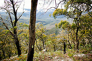 Image Ref: YR131<br /> Location: Cathedral Range State Park<br /> Date: 02.11.15