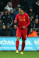 Sunday, 25 November 2012<br /> Pictured: Luis Suarez of Liverpool vents his anger after a Swansea foul<br /> Re: Barclays Premier League, Swansea City FC v Liverpool at the Liberty Stadium, south Wales.