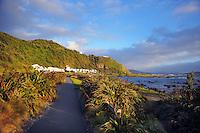 131202 Wellington Coast