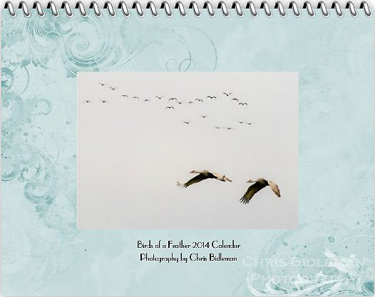"""Cover of the 2014 Birds of a Feather Calendar. The cover photo is called """"Sandhill Crane Duo Flight"""".  Two Sandhill Cranes (Grus canadensis) are in flight against a gray sky with a herd or sometimes called a construction of cranes in flight in the background."""
