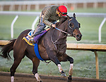 Ollie's Candy, trained by John W. Sadler, works in preparation for the Breeders' Cup Distaff at Keeneland 10.31.20