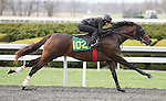 April 03, 2014: Hip 102 Blame - Forestier consigned by Eddie Woods worked 1/8 in 10:1  .  Candice Chavez/ESW/CSM