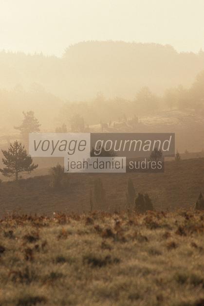 Europe/France/Limousin/23/Creuse/Plateau de Gentioux: Brumes
