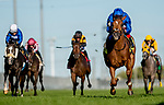 September 19, 2021: Albahr (Gb) #4, ridden by jockey Frankie Dettori wins the Grade 1 Summer Stakes on the turf at Woodbine Racetrack in Toronto, Ontario Canada on September 19th, 2021. Scott Serio/Eclipse Sportswire/CSM