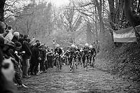 Team OmegaPharma-Quickstep in control of the iconic 'Muur van Geraardsbergen'<br /> <br /> Omloop Het Nieuwsblad 2014
