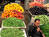 "A vegetable seller end up eating is own stock because of customer shortage after the economic blockade imposed on them after the victory of Hamas in the legislative elections last year May.20.2007""photo by Fady Adwan"""